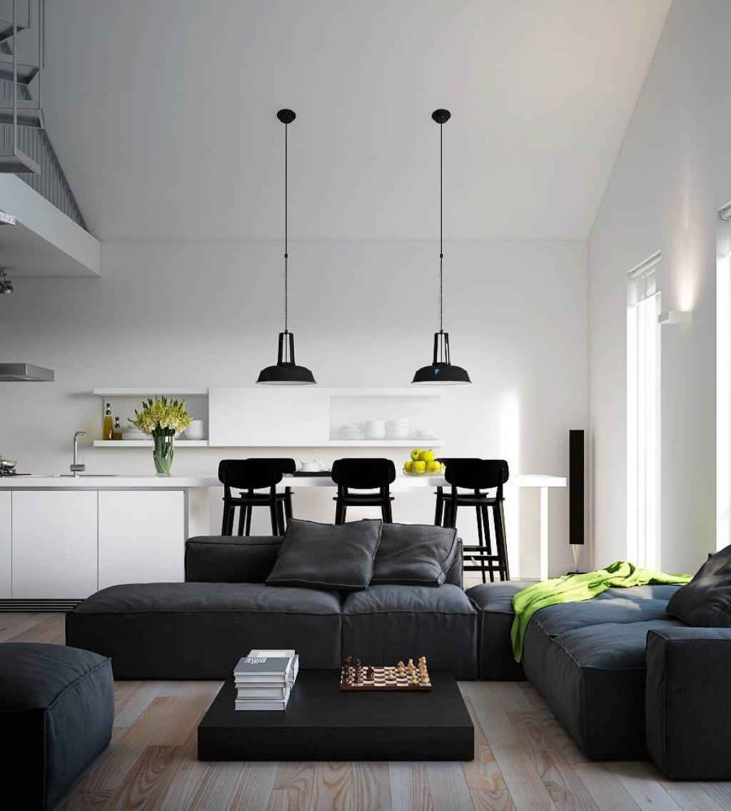 Black And White Apartment Kitchen With Living Room Stuido Design Interior Home Inspiring