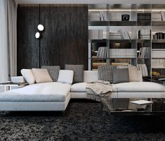 Comfortable Black and White Apartment Living Room with Full Bookshlev Wall