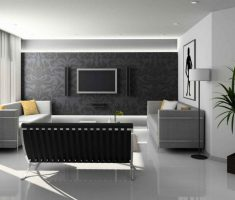 Modern Black and White Apartment Living Room