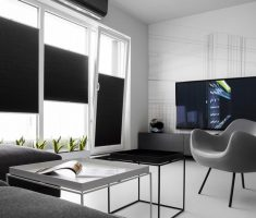 Modern and Minimalist Black and White Apartment Livng Room