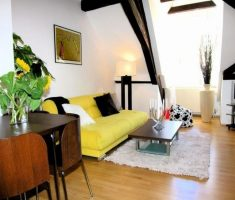 alluring cheap apartment livingroom decorating ideas with yellow sofa and small white rug