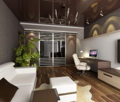 extraordinary apartment decoration brown and white color theme