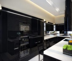 masculine Black and White Apartment kitchen design