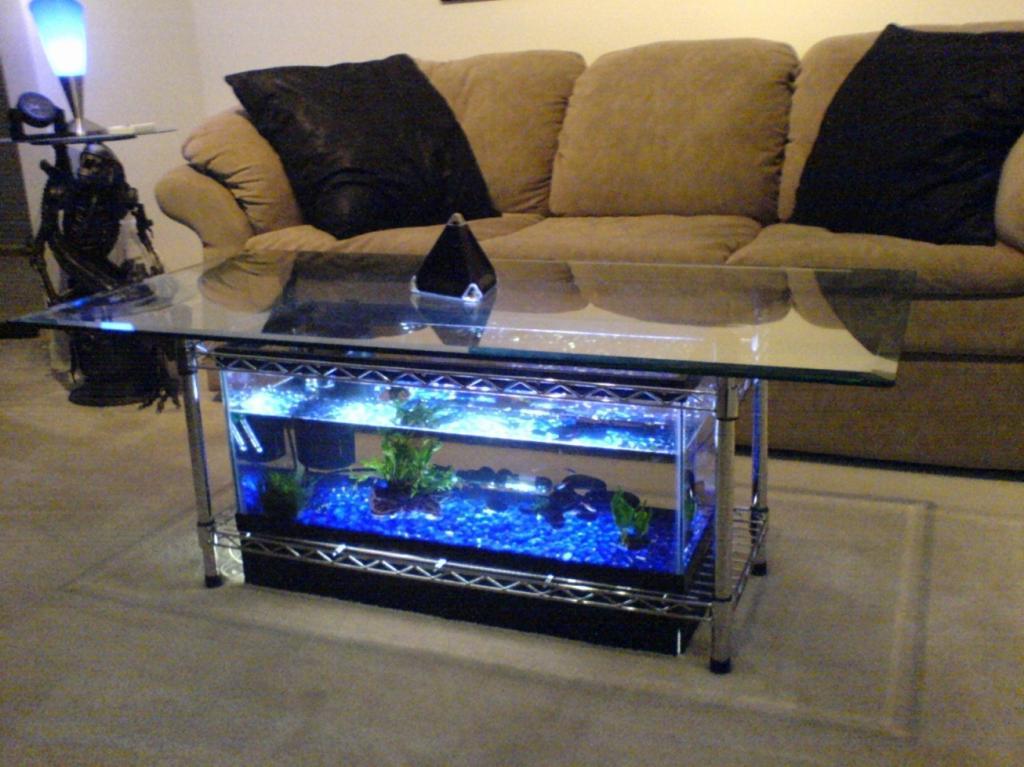 Alluring Coffee Table Fish Tank Rectangle Shaped
