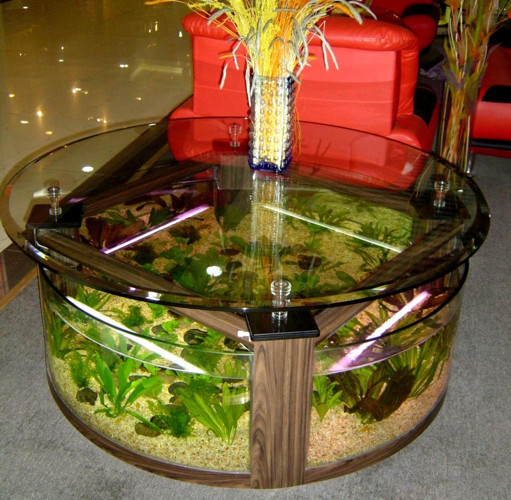 Beautiful Circular Coffee Table Aquarium