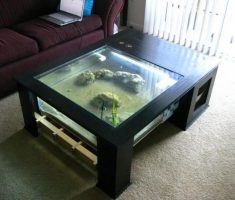 Coffee Table Aquarium with Half Space