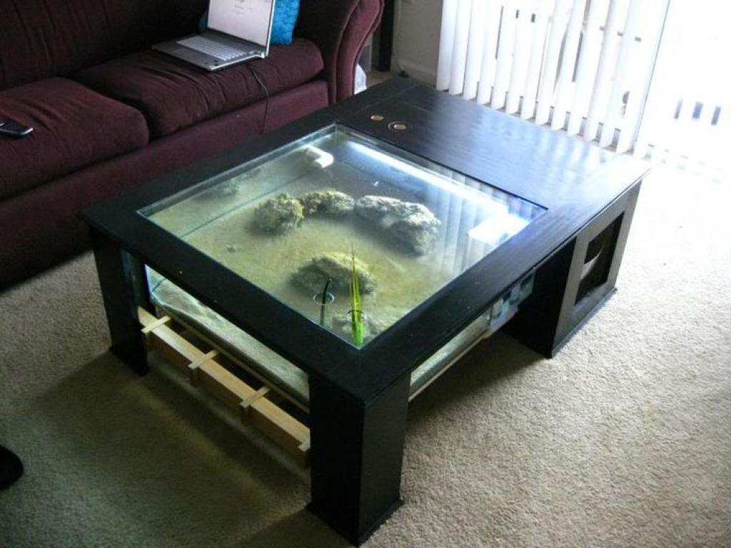 Aquariums for gallon aquarium petsmart wild pond - Aquarium coffee table diy ...