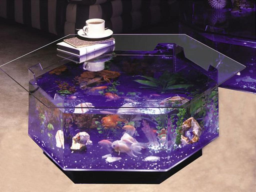 Creative hexagon coffee table aquarium home inspiring - Aquarium coffee table diy ...