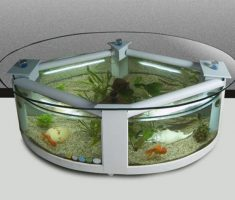 Cute Circular Coffee Table Aquarium Design