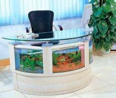 Cute Ovale Coffee Table Aquarium