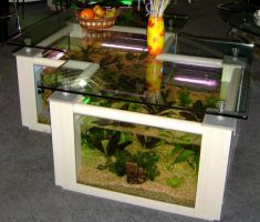 L shaped Coffee Table Aquarium Design