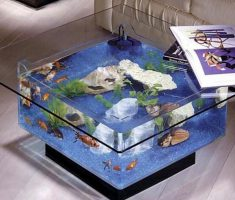 Medium size Coffee Table with Aquarium