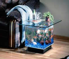 Minimalist Cute Small Coffee Table Aquarium Squar Glass