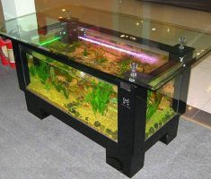 Minimalist Rectangle Coffee Table Aquarium