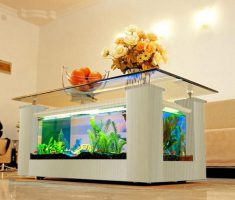Modern White Coffee Table Aquarium