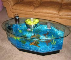 Ovale Coffee Table Aquarium Design with Hexagonal Sides