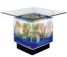 Small cute square Coffee Table Aquarium design