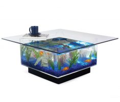 medium square Coffee Table Aquarium full glass