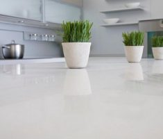 Best White Quartz Countertop Contemporary Kitchen Design