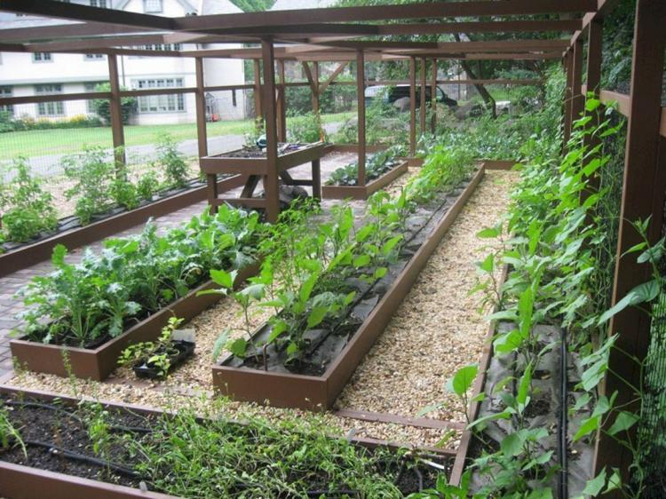 30+ Most Productive Small Vegetable Garden Ideas