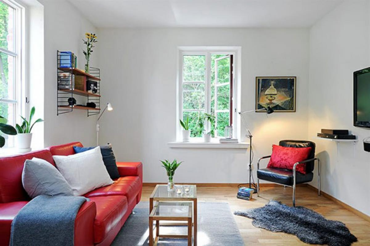 clearly-small-living-room-decorating-ideas-with-natural-atmosphere