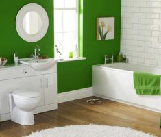 green-and-white-bathroom-decoration-ideas